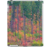 Fall in the Cascades iPad Case/Skin