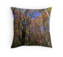 Season of Reason Throw Pillow