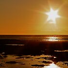 the sun, a very bright star by Birgit Van den Broeck