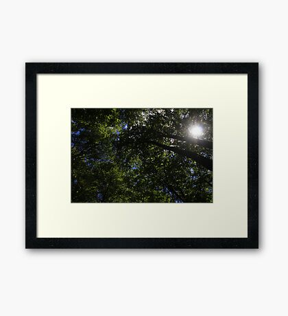 Spritual Cleansing Framed Print