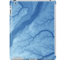 Amazon basin 2 iPad Case/Skin