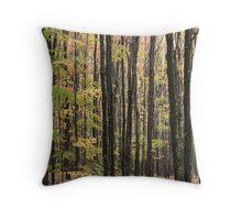 TreeSeeTrees Throw Pillow