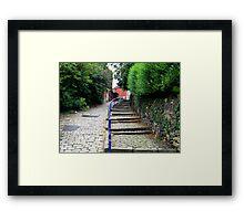 Stepping Up! Framed Print