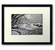Snowstorm - Burke, Virginia Framed Print