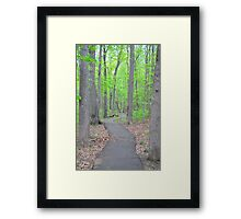 Spring forest  in Virginia Framed Print