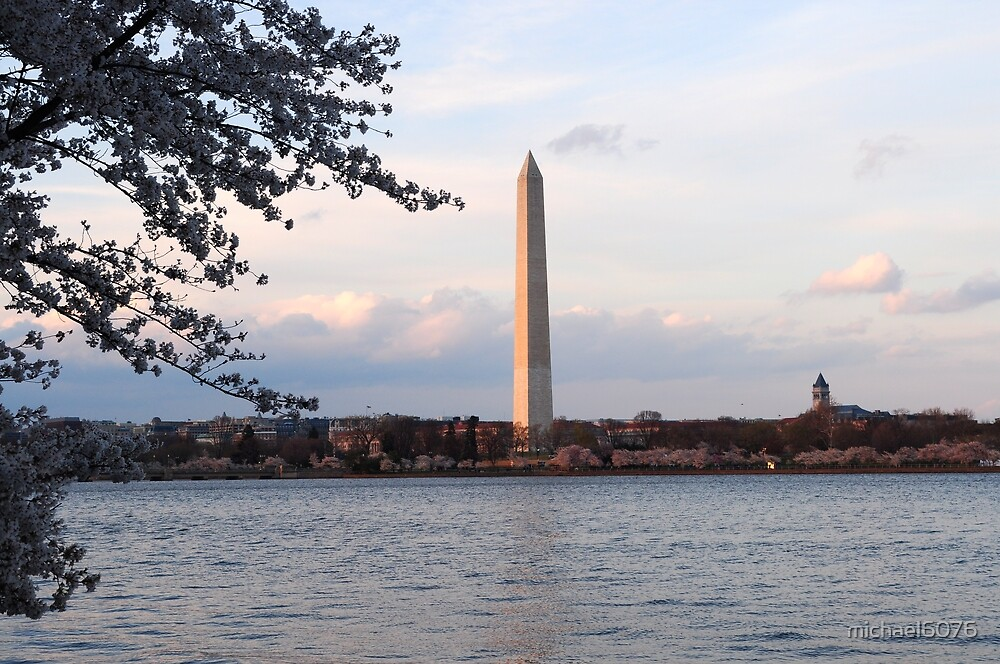 Cherry Blossoms and Tidal Basin Washington, DC by michael6076