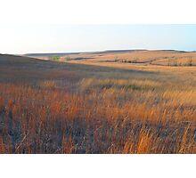 Tall Grass Prairie - Kansas Photographic Print