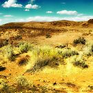 Wild West 2 by rocamiadesign
