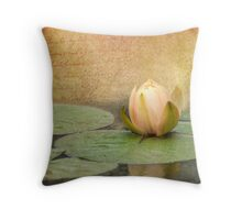 Peach Blush Throw Pillow