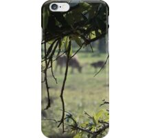 Through The Meadow iPhone Case/Skin