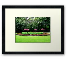 A bed of flowers Framed Print