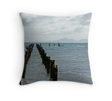 Cormorants On Old Jetty Posts Throw Pillow