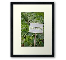 Zucchini - Eagle Heights Community Garden Framed Print