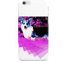 Dog-vision Corgi iPhone Case/Skin