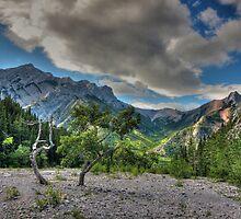 Rocky view by zumi