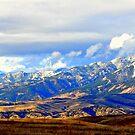 """Beautiful Montana"" by Lynn Bawden"