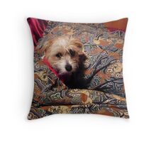 """""""You can't see me - I'm camouflaged!"""" Throw Pillow"""
