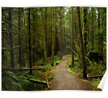 Rainy Forest on the East Canyon Trail Poster