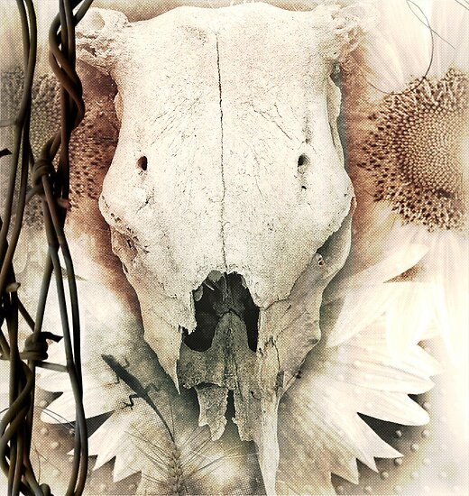 Total Eclipse of the Sun... Dust & Bones by Carmen Holly