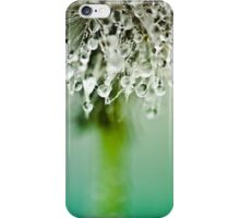 Dewdrop on Dandelion - 3 iPhone Case/Skin