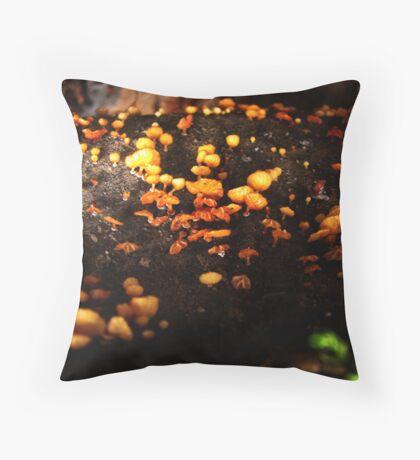 Orange colored mushrooms Throw Pillow