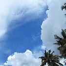Cloudy sky by Shiju Sugunan