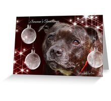 CC92 - Staffordshire Bull Terrier Greeting Card