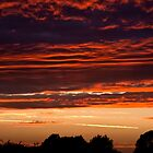 Just outside..... Sunset in Norfolk, UK. by Billlee