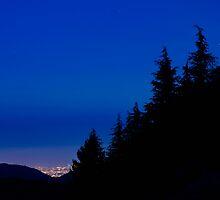 Le luci della città oltre il bosco by Andrea Rapisarda
