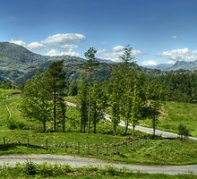 The Road To Tarn Hows by Jamie  Green