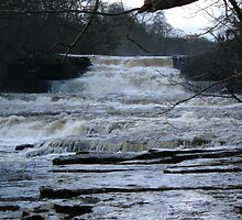 Aysgarth Falls by JaxHunter