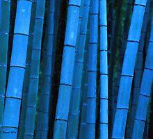 Bamboo by artstoreroom