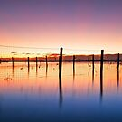 The old Bathing Nets - Redland Bay by Beth  Wode