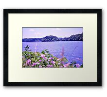 Spring at Burke Lake Framed Print