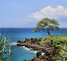 Wailea Hawaii by djphoto