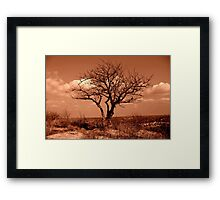 Lone Tree on Burnett's Mound Framed Print