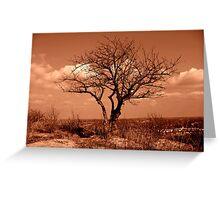 Lone Tree on Burnett's Mound Greeting Card