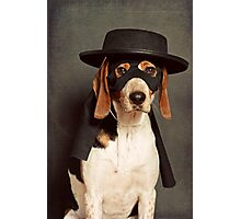 Even Zorro needs a best friend Photographic Print