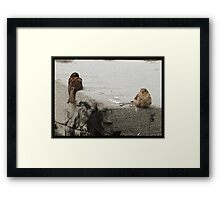 Guess whos in a huff? Framed Print