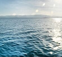 Low Isles Panorama by andreisky