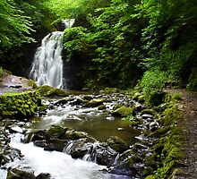 Glenoe Waterfall by Chris Cardwell
