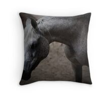 New Mexico ~ Horse Throw Pillow