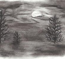 Moonlit Sky by Vanessa Zakas