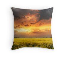 The luminous landscape pt.6. Throw Pillow