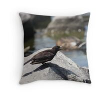 Posing Shore Bird Throw Pillow