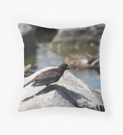 Posing Shore Bird Throw Pillow