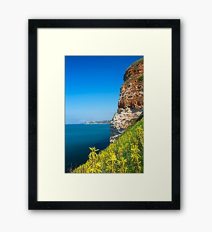 spring slope Framed Print
