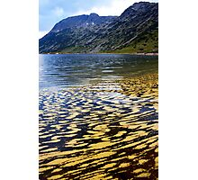 yellow colors of the lake Photographic Print