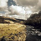 This Is England by cameraimagery