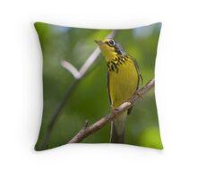 The Canada Warbler Throw Pillow